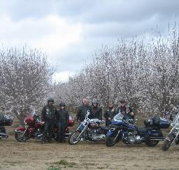 11MAR12: Almond Festival... photograph by Russell Holder